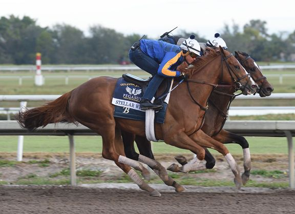 A number of runners pointing to next Saturday's $16-million GI Pegasus World Cup Invitational put in their final works for the world's richest race Saturday.  Champion Stellar Wind (Curlin), acquired by the Coolmore partners for $6 …