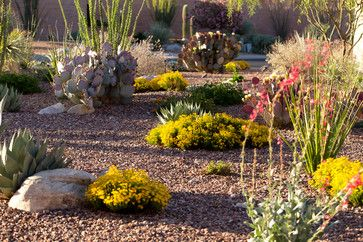 430 Best Images About Desert Landscaping Ideas On Pinterest 400 x 300