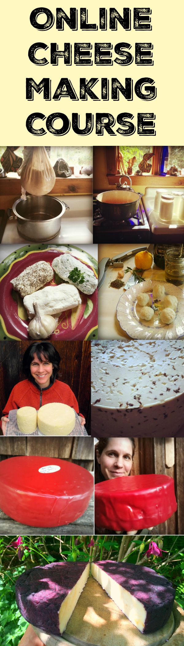 In my fun, self-paced online cheese making course, you learn how to make Greek Yogurt, Chevre, Gouda and Cabra al Vino. It includes ebooks, demonstration videos, and a private Facebook group to hang out with me, the instructor, to ask questions and celebrate your successes! http://www.marblemounthomestead.com/online_cheese_making_workshop.html