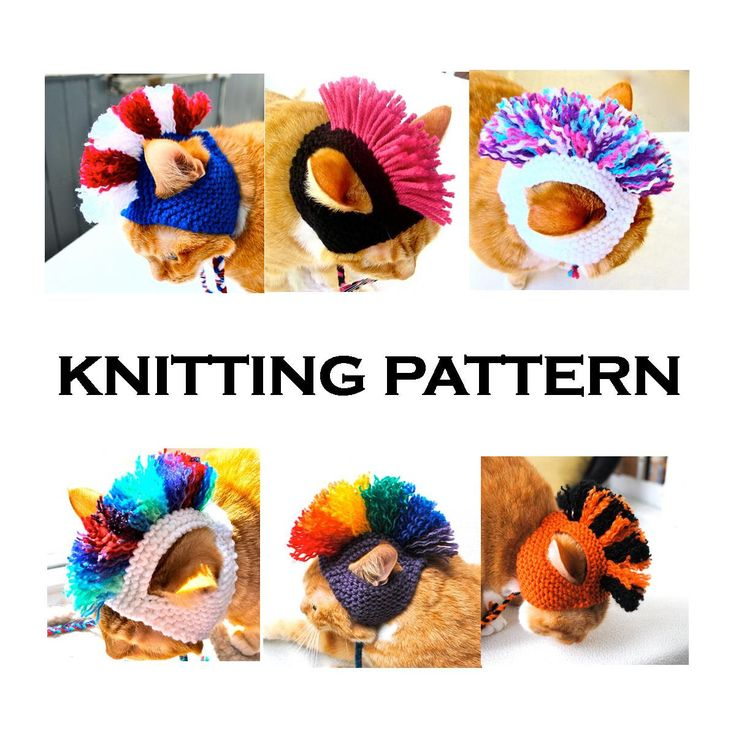 Mohawk Cat Hat Knitting Pattern - Instant Download - DIY Hand Knit Cat Costume by bitchknits on Etsy https://www.etsy.com/listing/162328330/mohawk-cat-hat-knitting-pattern-instant