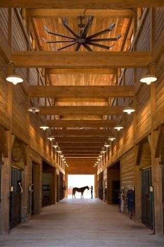 My dream stables