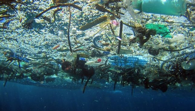 The winner of a new video contest can join a 3-week 'hardcore sailing adventure' through North Atlantic garbage patches.