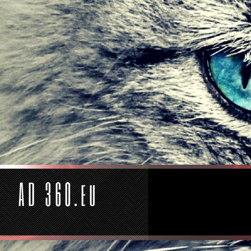 www.ad360.eu/media  To publish information that is valuable - we must use the power of topic related content allied to the platform we are on.  #AD360eu #AD360 #Strategy #Social Media #Digital #Tools Tactics #Transition #Development #Transformation #Channels Robots
