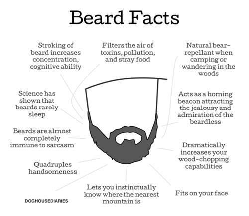 "Beards! ""Dramatically increases your wood-chopping capability"" and ""let's you instinctively know where the nearest mountain is"""