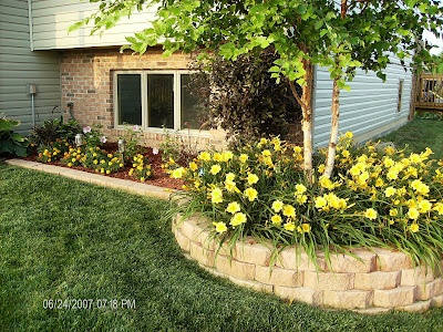 Front landscape like the birch stella daylillies brick for Front garden brick wall ideas