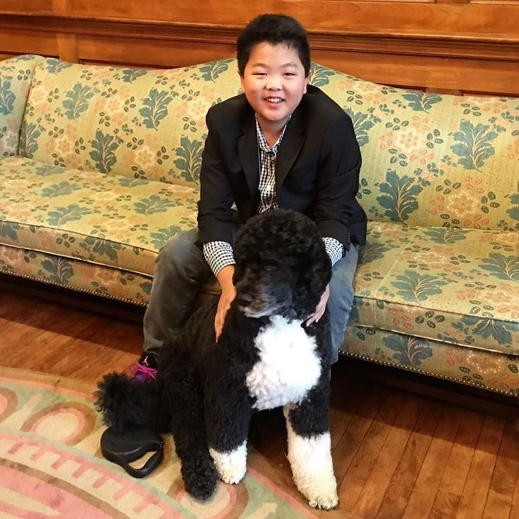 What's up everybody? I'm Hudson Yang Academy-award winning actor in @FreshOffTheBoatABC. I swung by D.C. yesterday to join my boo Bo in celebrating Asian American and Pacific Islander Heritage Month -- and they let me loose in the White House! So I'm taking over Instagram to give you a personal tour of what's going down around the House. #AAPI This may or may not be true. by whitehouse