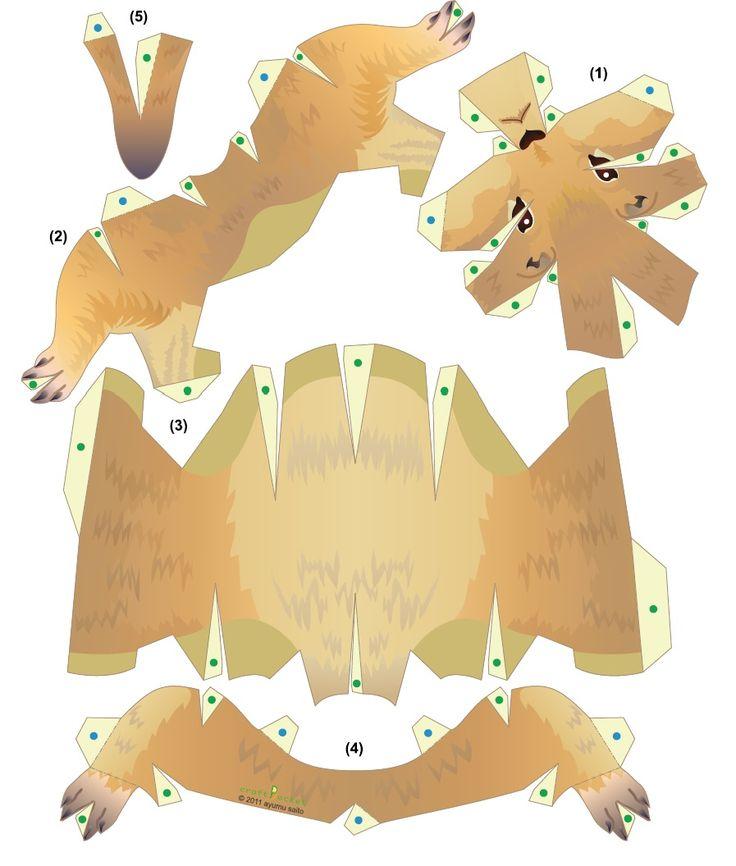 Картинки для изучения зверей половиной