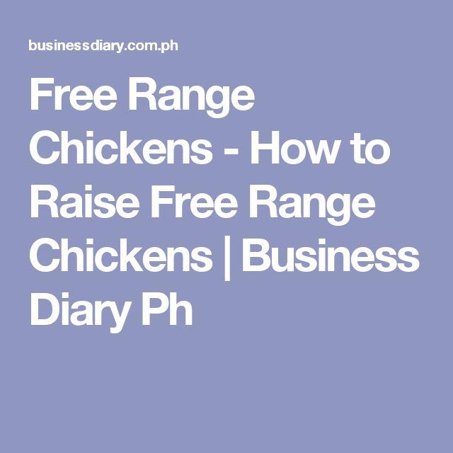 Free Range Chickens - How to Raise Free Range Chickens   Business Diary Ph