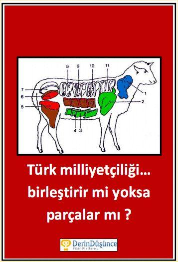 """Türk milliyetçiliği birleştirir mi yoksa parçalar mı? İllâ ki bir tutkal/çimento mu gerekiyor? Adaletin, hukukun hâkim olmadığı ortamlarda Türklerin kardeşliği ne işe yarar? Belki de Türk Milliyetçiliği diğer milliyetçilikler gibi yok olmaya mahkûm bir söylem. Çünkü var olmak için """"ötekine"""" ihtiyacı var. Ötekileştireceği bir grup bulamazsa kendi içinden """"zayıf"""" bir zümreyi günah keçisi olarak seçiyor. Kürtler, Hıristiyanlar, Eşcinseller, solcular…Müslüman milliyetçi olunabilir mi?"""