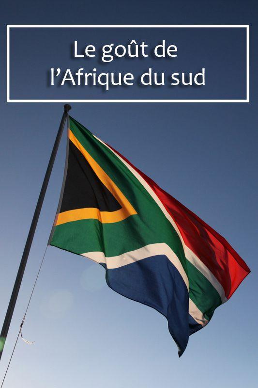 Pourquoi aller en Afrique du sud ? Je vous donne quelques idées #meetsouthafrica #afriquedusud