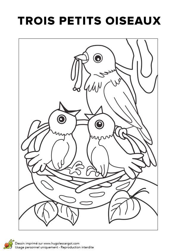Trois petits oiseaux, chansons pour enfants