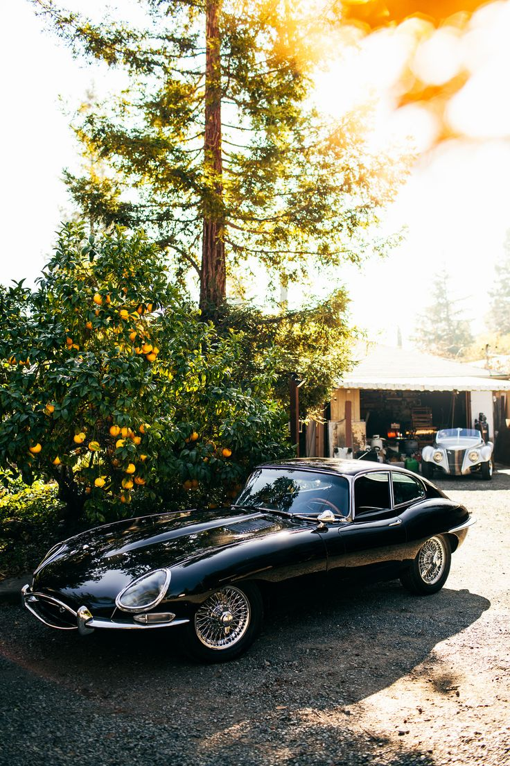 Jaguar E-Type , one of the legends of car design...