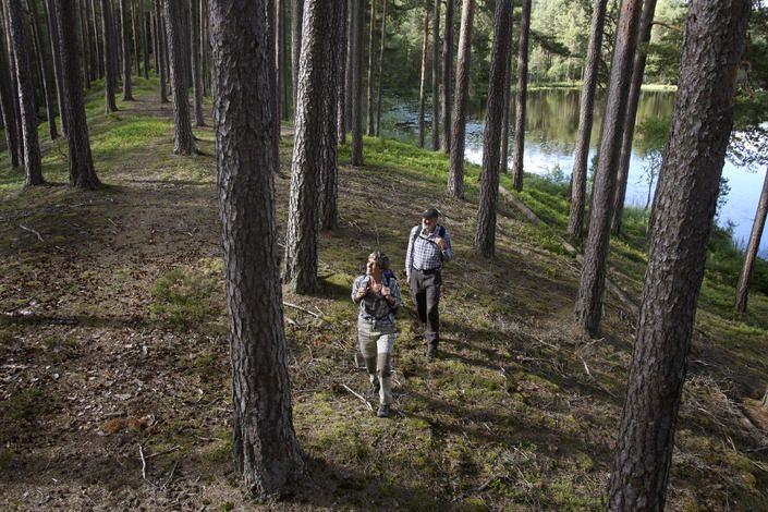 Smålands bästa vandringsleder   Visit Småland
