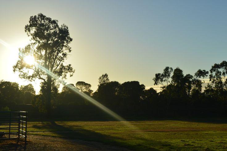 Nikon D3200,L1M1AP2-4, Auto, Aperture f/11, Shutter Speed 1/500, ISO (Auto 180) Sunrise,clear day,long shadows
