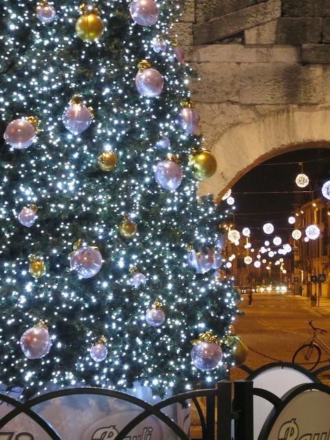 ★albero di Natale(Christmas tree) --Verona, Italy