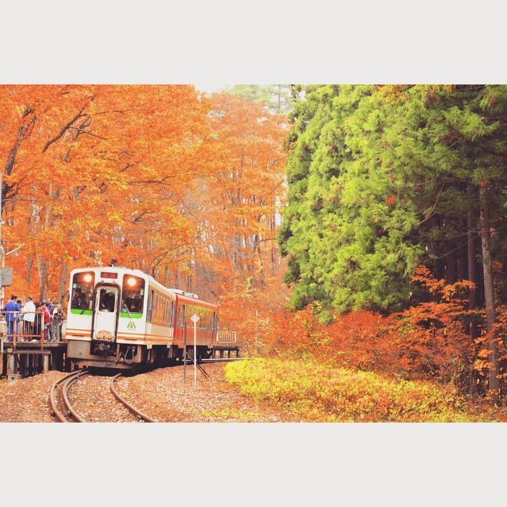 西若松駅 - 会津高原尾瀬口駅を結ぶ会津鉄道会津線は数々の紅葉スポットがあります。塔のへつり駅は近くに国指定天然記念物、塔のへつりがあります。