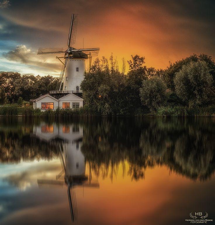 Photography Inspiration : Photo