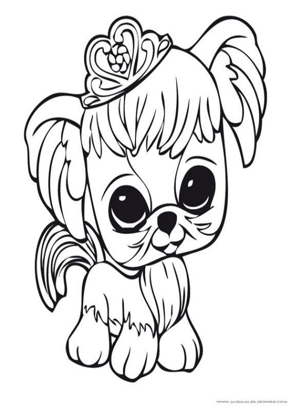 19 Best Ausmalbilder Littlest Pet Shop Images On Pinterest Dibujos De Pet Shop Y Con Color