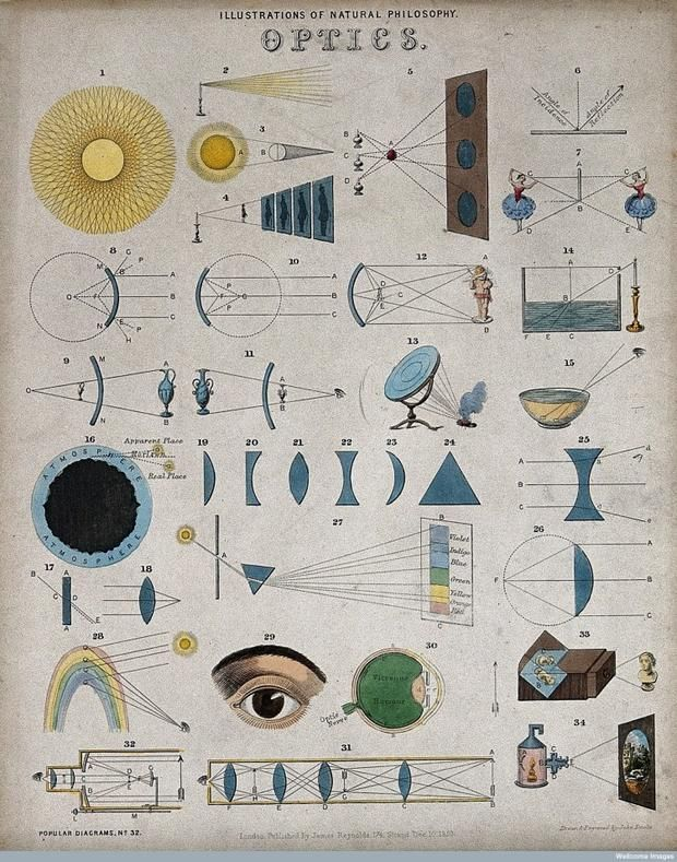 Optics - Mid 1800s infographic illustrated by John Philipps Emslie