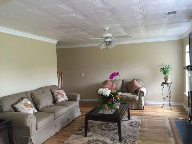 Styrofoam Decorative Ceiling Tiles 28 Best Living Room Ideas Images On Pinterest  Living Room Ideas