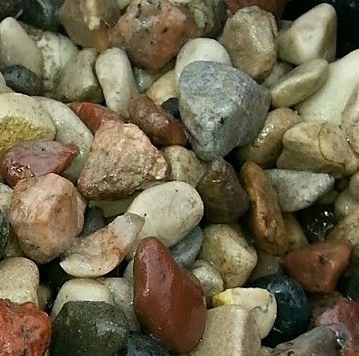"""Amazon.com : Safe & Non-Toxic {Small Size, 0.25"""" Inch} 10 Pound Bag of Gravel & Pebbles Decor for Freshwater Aquarium w/ Earthy Toned Rustic Smooth River Inspired Polished Style [Brown, Tan, Red & Gray] : Pet Supplies"""
