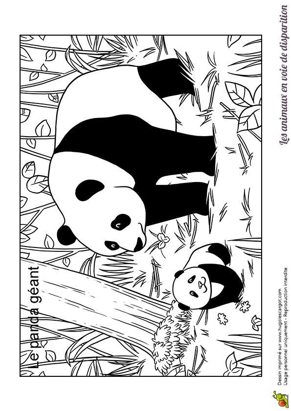 Epingle Sur Coloriages Animaux De La Jungle Et De La Savane