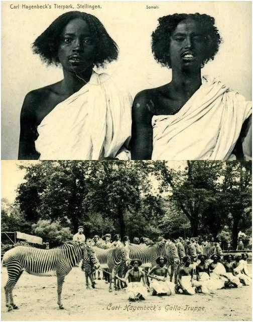 """There is a misconception about the Atlantic Slave Trade by some and how it never reached East and North Africa.  """"One of Hagenbeck's human zoo shows received half a million visitors in Paris. Many of those put on display died quickly of diseases unknown in their homelands.  Carl Hagenbeck's """"Galla Truppe,"""" a group from the Oromo people, kidnapped from Ethiopia."""""""