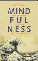 Mindfulness - Edel Maex