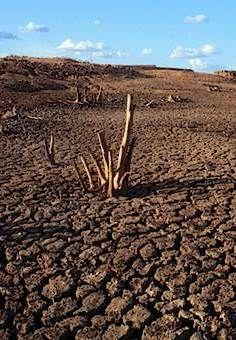 Sertão do Nordeste Brasileiro http://mesmines.hautetfort.com/visages-de-tous-ages-de-tous-pays/