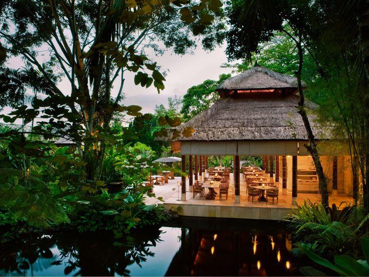 25 unique ubud hotels ideas on pinterest hotels in ubud for Unusual accommodation bali
