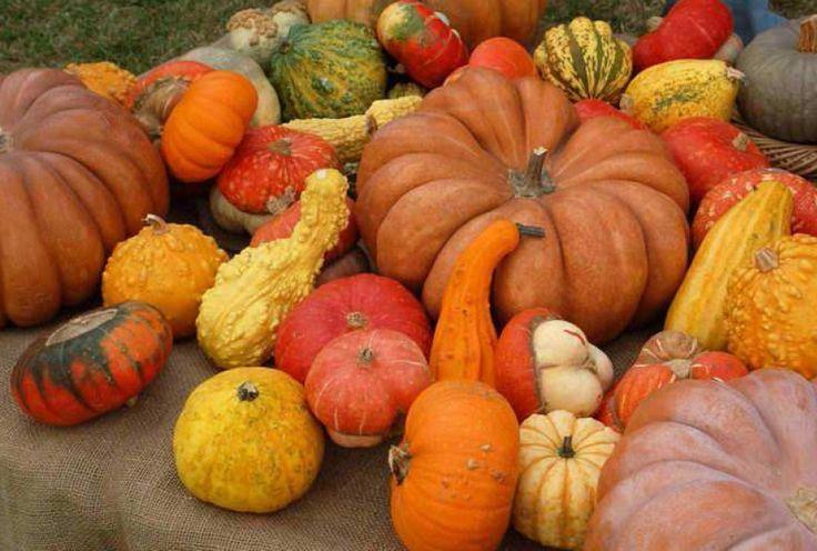 frutta e verdura d'autunno