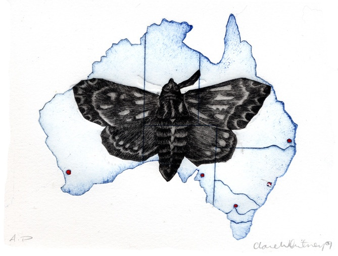Image of Australia by Clare Whitney