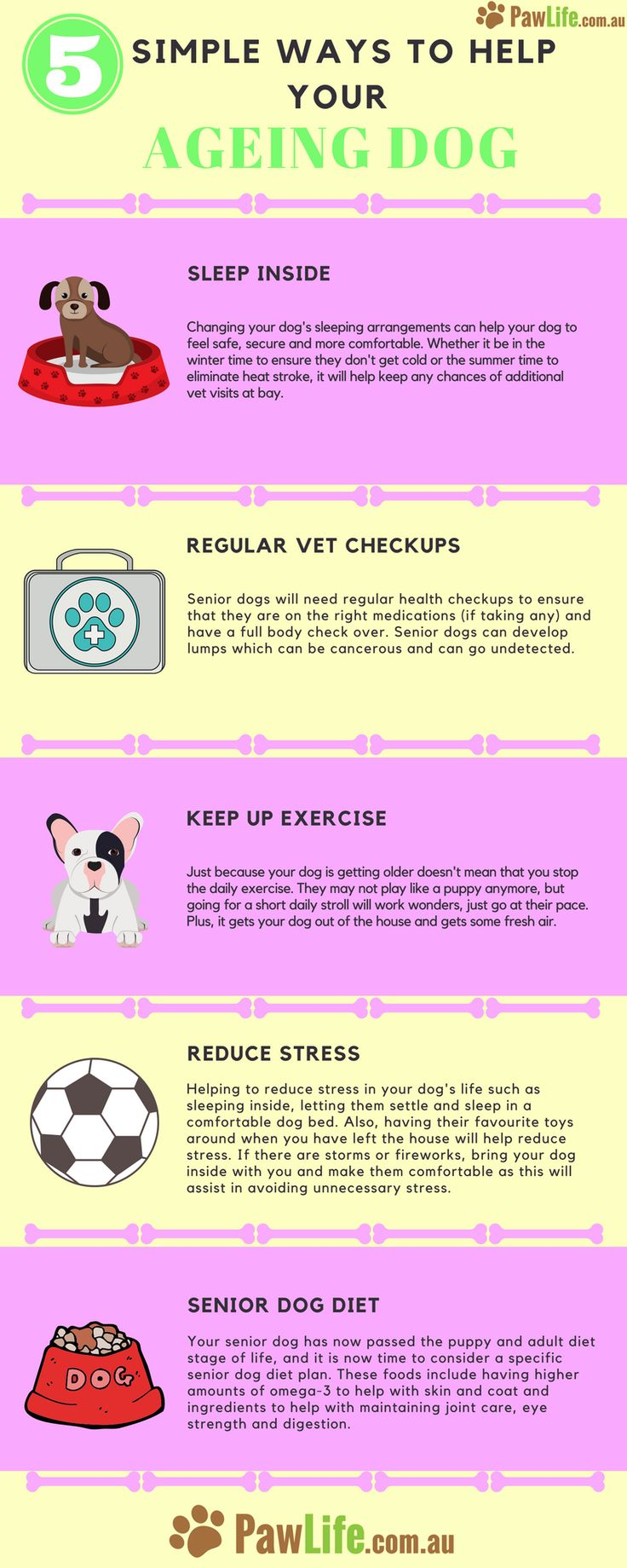 There are five simple ways to help your ageing dog feel better and get the most out of life.