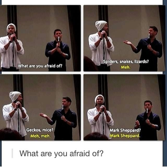 """Mark Sheppard"" What are you afraid of? Supernatural - Jared Padalecki, Jensen Ackles - Sam & Dean Winchester"