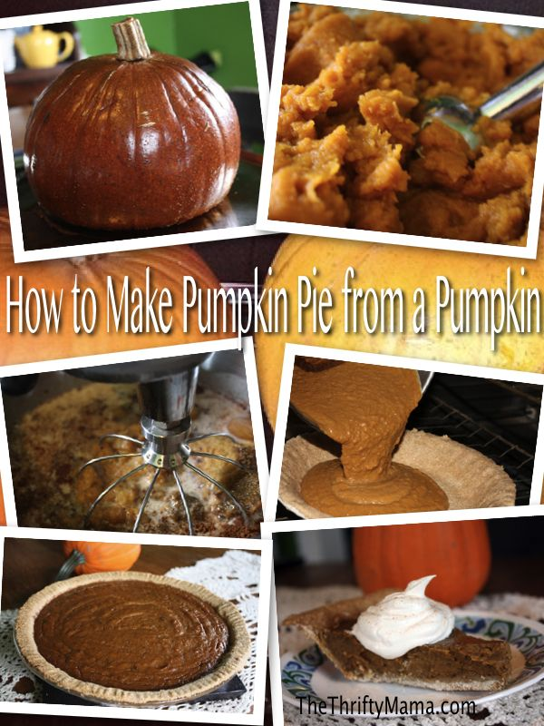 Pumpkin Pie via The Thrifty MamaDesserts, Things Fall, Holiday, Homemade Pumpkin, Pumpkin Yummy, Fall Recipe, A, Thrifty Mama, Pumpkin Pies