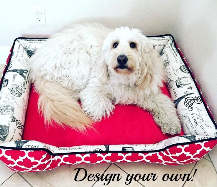 French Inspired Dog Beds |  Great Dane Bed | Choose your own fabric | Washable Pet Duvet | Large Pet furniture | Large Dog Bed | Square Bed by SammysSewShop on Etsy