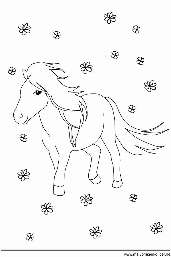 Pin Von Bi Ni Auf Kleine Madchen Malen Ausmalbilder Pony Ausmalbilder Pferde Ausmalen