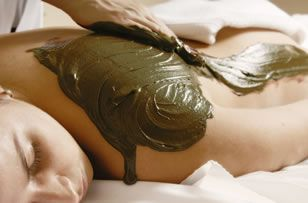 Ajala Spa's Dermalogica Enzymatic Sea Mud treatment - Detoxify, exfoliate and nourish the body with a purifying seaweed and mineral mud poultice sealed in a warm, relaxing wrap. Infused with aromatic botanical extracts and fruit enzymes, this treatment will leave the skin smooth and supple. https://www.ajalaspa.com/treatments/body-treatments/