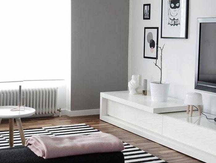 Les Meubles Scandinaves Beaucoup D Idees En Photos Mobilier De Salon Meuble Scandinave Decoration Maison