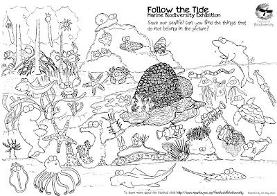 wild shores of singapore awesome marine colouring sheet get it at the festival of biodiversity teach kids about malaysia and singapore pinterest