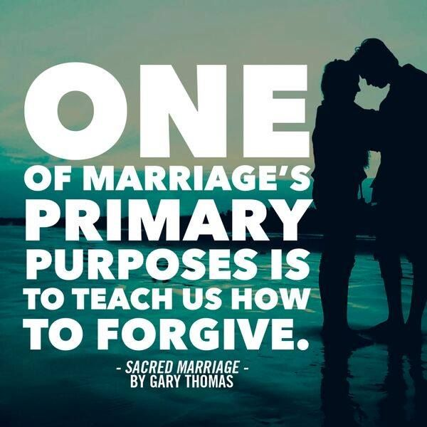 Sacred Marriage Participant's Guide: What If God Designed ...