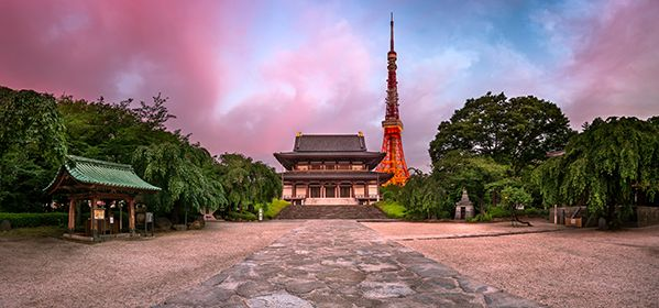 Things to do in Tokyo, places to visit in Tokyo and eveything you need to know about Tokyo tourist attractions on tourist tube web.