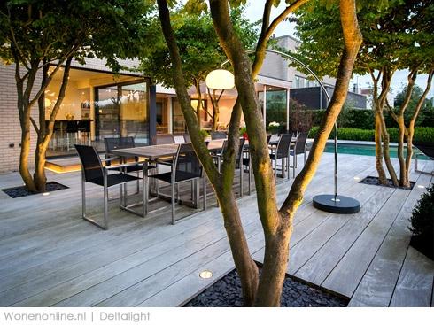 Vier solitaire bomen verwerkt in het terras met goede belichting. (foto)