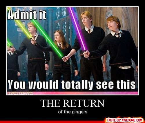 Haha Harry Potter and Starwars combined