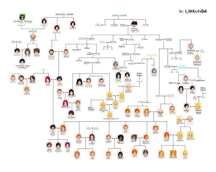 Harry Potter family tree chart - Hungarian artist Fanni Blazsó has released on Deviant Art a new version of the Harry Potter family tree.