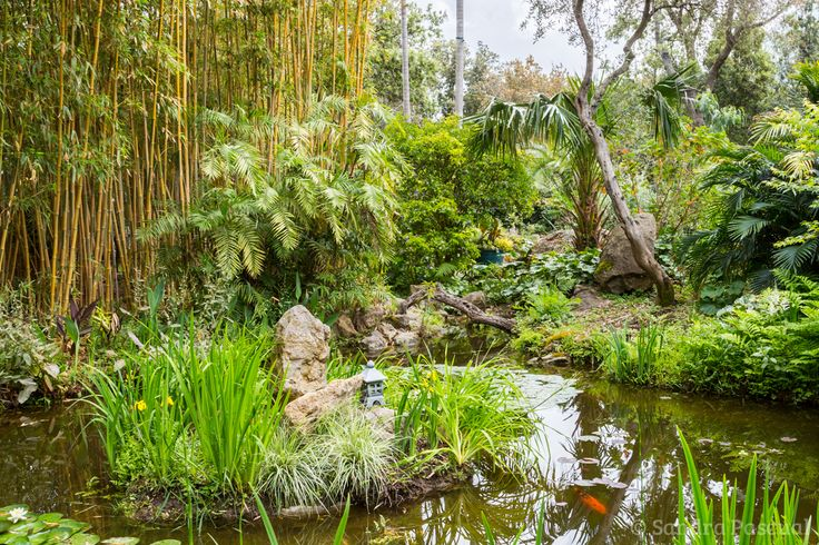 Jardin de la Mortella, Ischia via @cuisineaddict