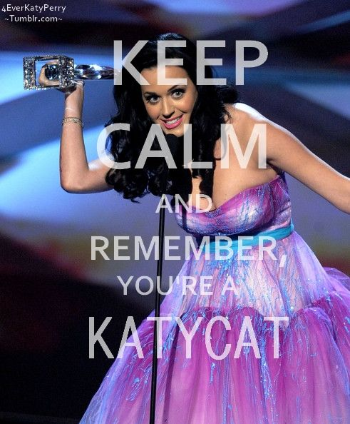 I AM a KatyCat! In 2014 I won tickets from Staples to see her live in concert on the Prismatic World Tour. I listen to her music a lot and I admire her as a person.