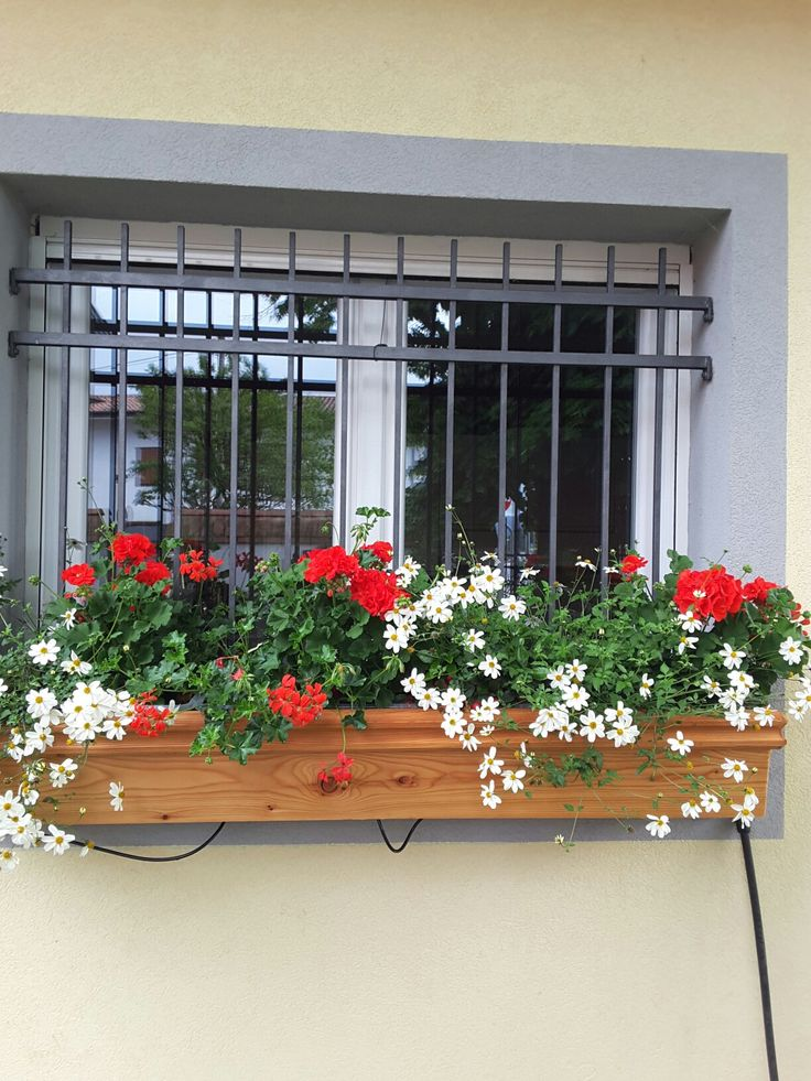 Window box white and red