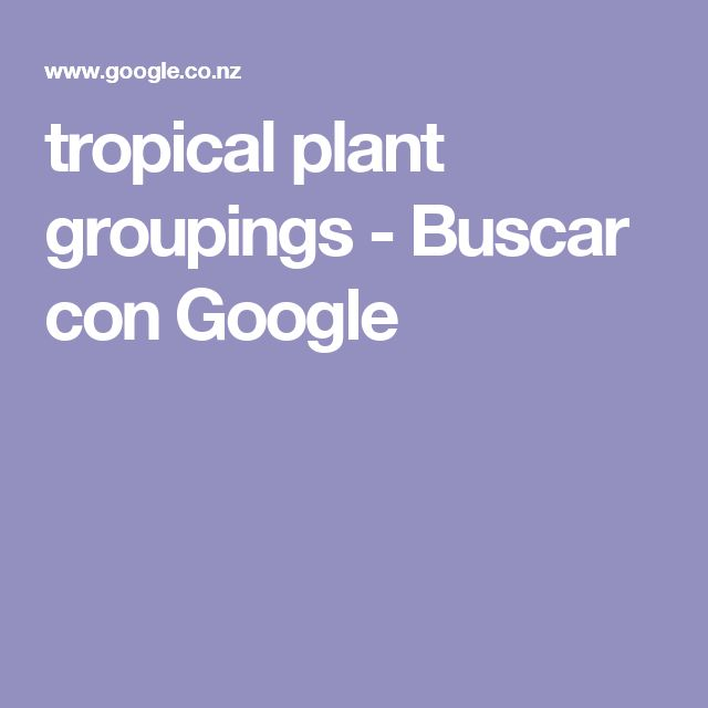 tropical plant groupings - Buscar con Google