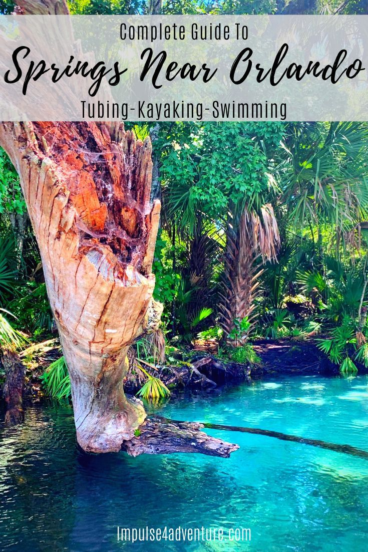 The 5 Best Natural Springs Near Orlando Impulse4adventure Florida Adventures Florida Adventures Rainbow Springs State Park Florida Vacation